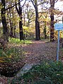 Permissive footpath - geograph.org.uk - 1052653.jpg