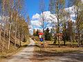 Petäjävesi - pedestrian street.jpg