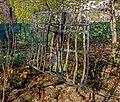 Pfinztaler Skulpturenweg - Fangnetz - Gisela List - Karin Siegel.jpg