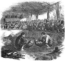 Sabong sa Pilipinas, noong mga maagang 1800.