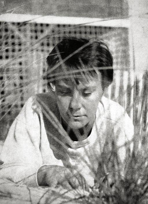 Photo portrait of Harper Lee (To Kill a Mockingbird dust jacket, 1960)