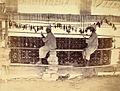 Photograph of Carpet Weavers in Karachi Jail - 1873.jpg
