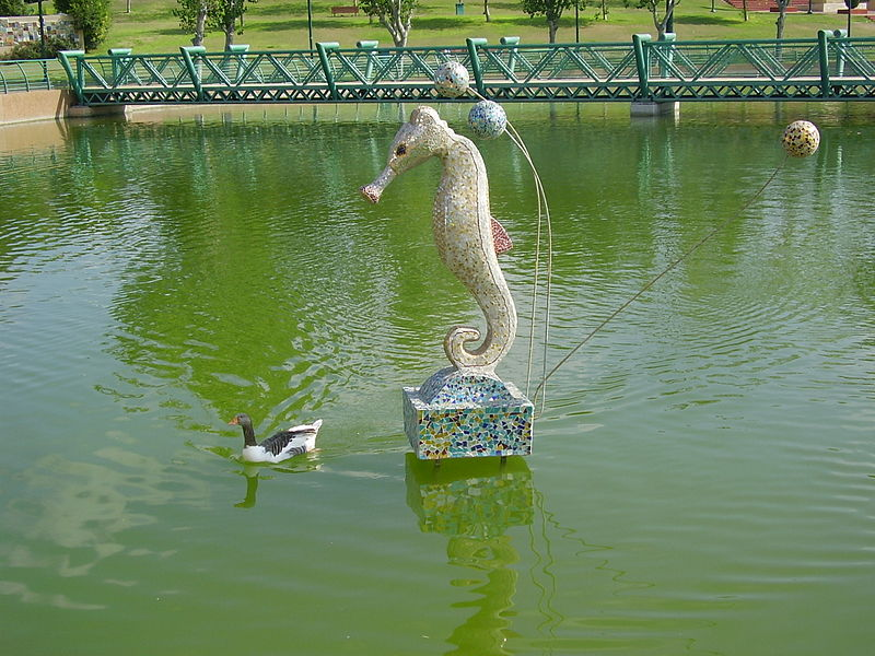 פסל סוסון ים בפארק רעננה