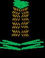 Pinus zweig mit männlichen blüten.png
