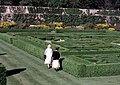 Pitmedden House garden - geograph.org.uk - 253773.jpg