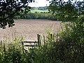 Ploughed field near Gt Missenden - geograph.org.uk - 47324.jpg