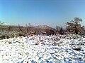 Pogled na Gradinu zima.jpg