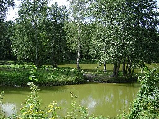 Poland. Zalesie Górne 001 per Albertyanks Albert Jankowski (Obra pròpia) [Domini públic], via Wikimedia Commons