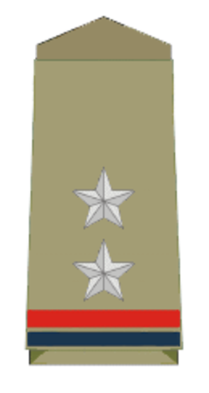 Sub-inspector - Insignia of an Indian Police officer with rank of police sub-inspector