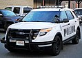 Police vehicle with noxious weed attached.jpg