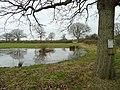 Pond and permissive path - geograph.org.uk - 672415.jpg