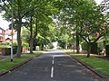 Poplar Avenue - Dewsbury Road - geograph.org.uk - 1400012.jpg