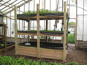 Aquaponics - A small, portable aquaponics system.  The term aquaponics is a portmanteau of the terms aquaculture and hydroponic agriculture.