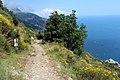 Positano - panoramio (7).jpg