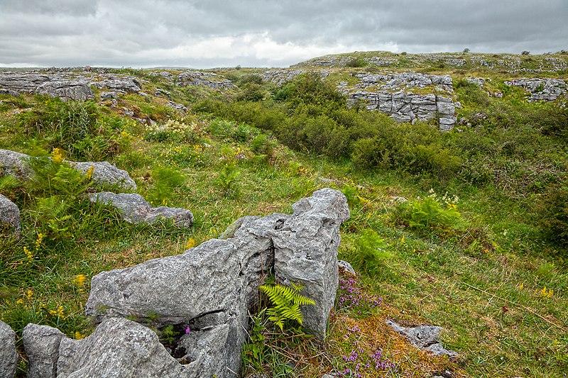 File:Poulnabrone Landscape - HDR (10294419204).jpg