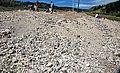 Precious opal collecting site (Spencer, Idaho, USA) 2.jpg