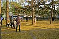 Preparing a solo photo at Diaoyutai (20161115143955).jpg