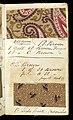 Printer's Sample Book, No. 19 Wood Colors Nov. 1882, 1882 (CH 18575281-16).jpg
