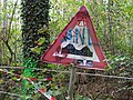 Protest writing in the Hambach forest 05.jpg