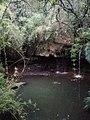 Quebrada Honda Tocancipa Cund.jpg