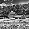 Queen Sirikit Botanical Gardens Rim Tai Chiang Mai Thailand - panoramio.jpg