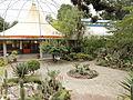 Quitos botaniska trädgård-IMG 9218.JPG