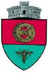 ROU SV Satu Mare CoA.png