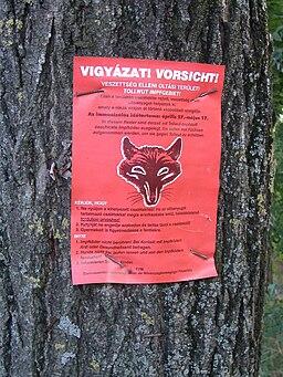 Rabies warning Makó