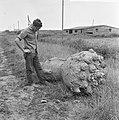 Raketmoter van V2 gevonden in Europoort, Bestanddeelnr 916-6454.jpg