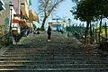 Redhead Steps (145340947).jpeg