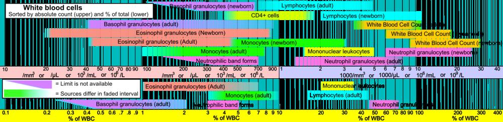 leukocytter i blodet