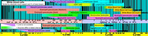 leukocytter værdier
