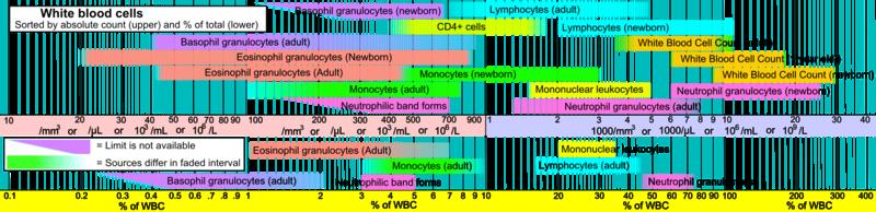 Lymphocyte Wikipedia