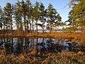 Reflecting Pond (15868463855).jpg