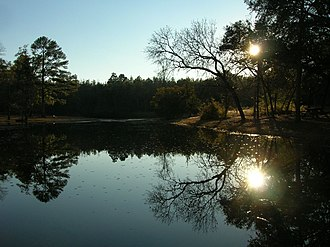 Aiken State Park - Image: Reflection over lake aiken sc