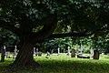 Richmond Cemetery - panoramio (1).jpg