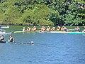 Rio 2016 - Rowing 8 August (29422427486).jpg