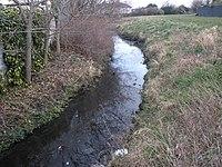River-Poddle-2010-02-19a.jpg