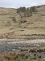 River Isla - geograph.org.uk - 167371.jpg