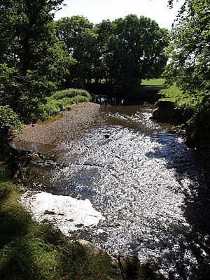 River Lew - River Lew close to is confluence with the River Torridge