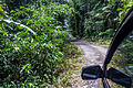 Road from Pancuran Tujuh, near Baturraden, Purwokerto, 2015-03-23.jpg