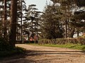 Road to Firs Farm - geograph.org.uk - 378426.jpg