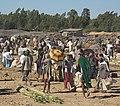 Roadside Market, Ethiopia (2806418954).jpg