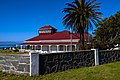 Robben Island Guest House, wall and palm tree.jpg