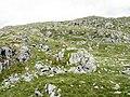Rock outcrops - geograph.org.uk - 727081.jpg