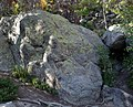 Rocky Mountain National Park in September 2011 - Bear Lake area - boulder with lichen.JPG