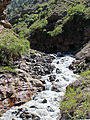 Rohtang Pass 2011 IMG 2227 (6908111031).jpg