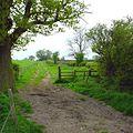 Roman road near Nobold - geograph.org.uk - 410020.jpg