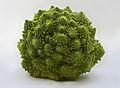 Romanesco Brassica oleracea Richard Bartz.jpg
