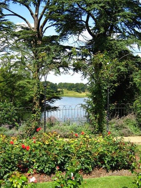 File:Rose garden, Blenheim Palace - geograph.org.uk - 1433097.jpg